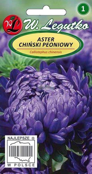 Aster chiński peoniowy fioletowy (1 g)