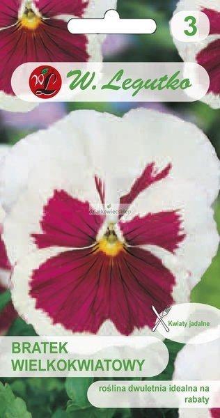 Bratek wielkokwiatowy - White/Pink eye (0,3 g)
