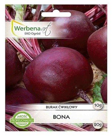 Burak ćwikłowy Bona (Beta vulgaris L.) 10g