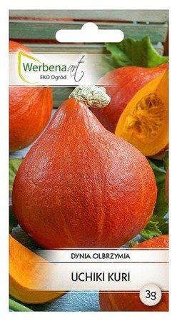 Dynia olbrzymia Uchiki Kuri (Cucurbita maxima Duchesne) 3g