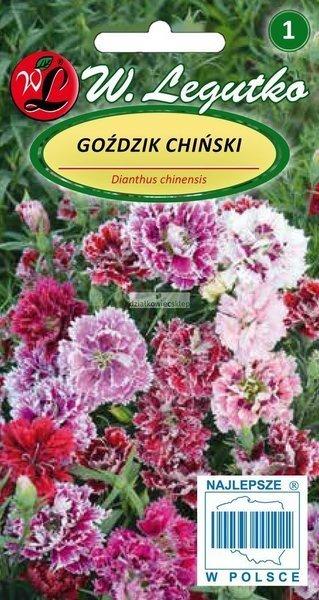 Goździk chiński - mieszanka (1 g)