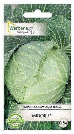 Kapusta głowiasta biała Midor mieszaniec  (Brassica oleracea L.) 0,5 g.
