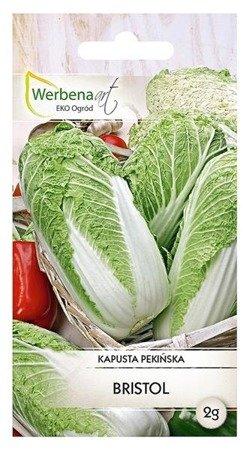 Kapusta pekińska Bristol (Brassica oleracea L.) 1 g.