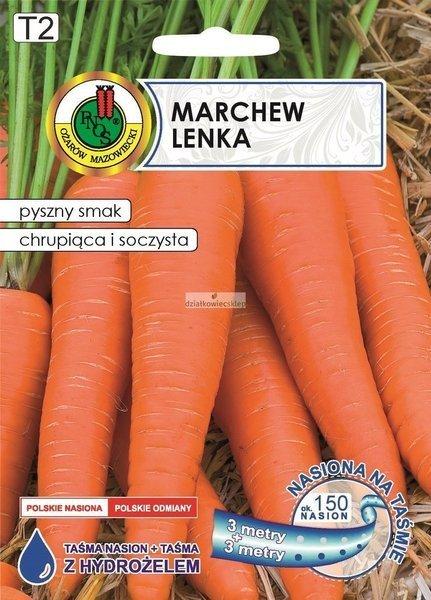 Marchew jadalna Lenka (6 m) - nasiona na taśmie z hydrożelem