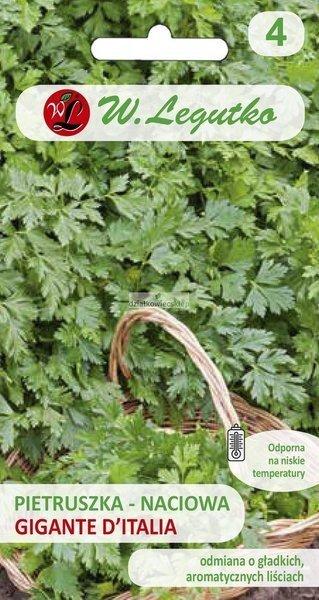 Pietruszka naciowa Gigante d' Italia - liście gładkie (2 g)
