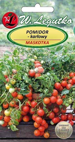 Pomidor gruntowy karłowy Maskotka (0,5 g)