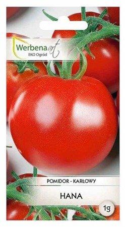 Pomidor karłowy Hana (Lycopersicon esculentum Mill) 1g
