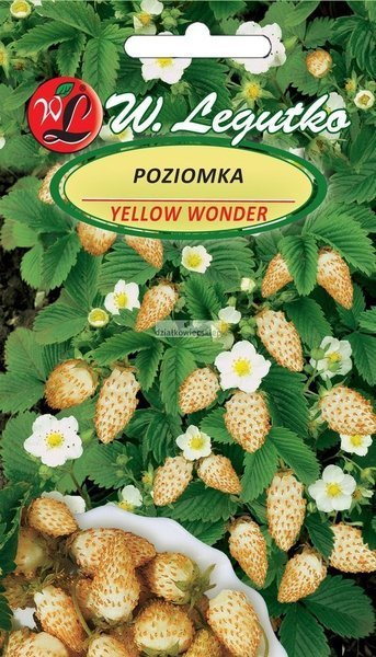 Poziomka Yellow Wonder (0,1 g)