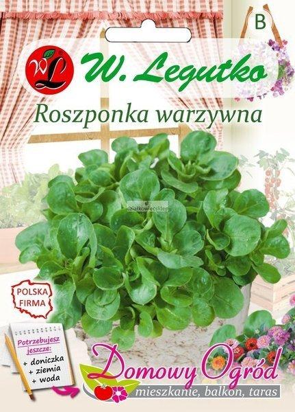 Roszponka warzywna (2 g) - Domowy Ogród