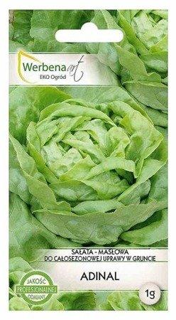Sałata masłowa Adinal (Lactuca sativa L.) 1g
