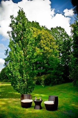 Zestaw mebli ogrodowych MODICO